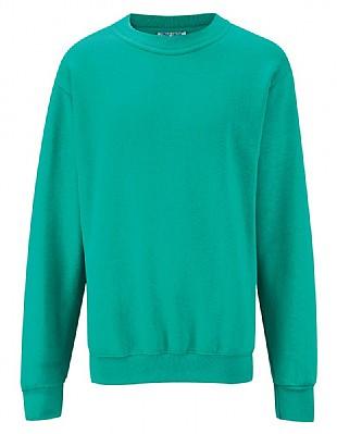 cotton rich sweatshirt in Jade